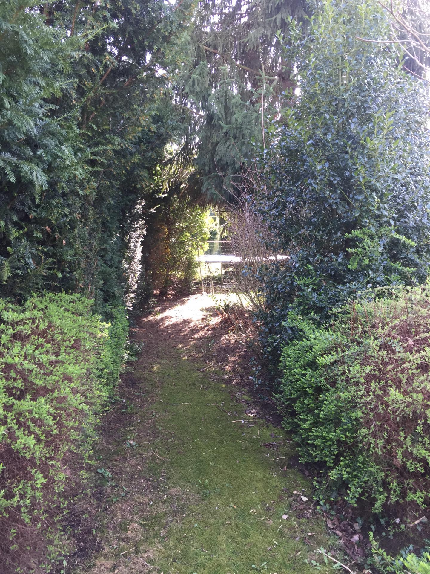chemin du sous bois