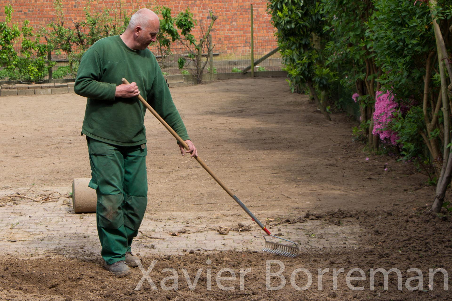 Aménagement d'une pelouse